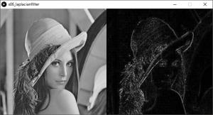 左:原画像,右:ラプラシアンフィルタを掛けた画像