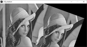 左:原画像,右:回転を施した画像