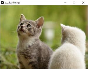 画像ファイルを読み込み、ウィンドウに表示する。