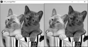 左:原画像,右:平均値フィルタを掛けた画像