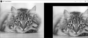 左:原画像,右:平行移動した画像