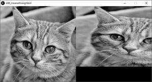 左:原画像,右:拡大縮小した画像(最近傍内挿法を使用)