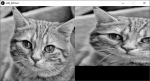 左:原画像,右:拡大縮小した画像(バイリニア補間を使用)