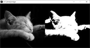 左:原画像,右:2値化した画像