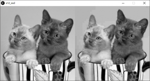 左:原画像,右:原画像を劣化させた画像