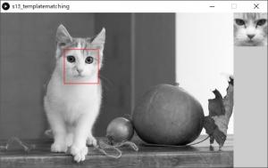 左:探索対象画像,左:テンプレート画像,赤枠:テンプレートマッチングによって検出された位置