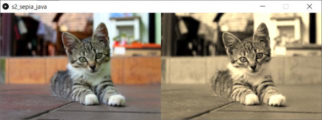 カラー画像をセピア調画像に変換(左:原画像、右:変換後画像)