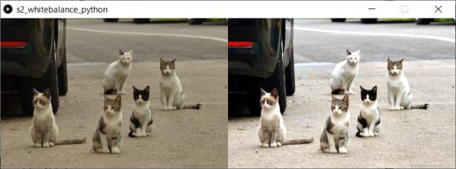 カラー画像のホワイトバランス調整(左:原画像、右:変換後画像)