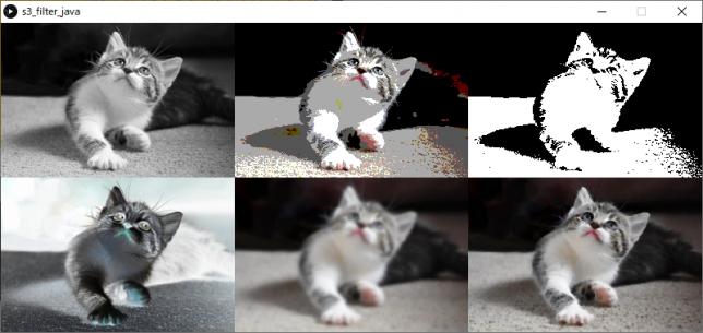 Processingの組込みフィルタ(左上:グレイスケール変換、中上:ポスタリゼーション、右上:2値化、左下:輝度反転、中下:ガウシアンフィルタ、右下:収縮フィルタ)