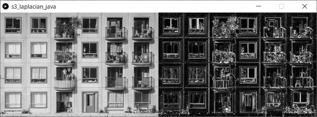 ラプラシアンフィルタ(左:原画像、右:変換後画像)
