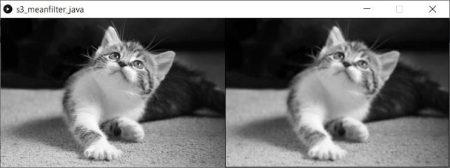 平均値フィルタ(左:原画像、右:変換後画像)